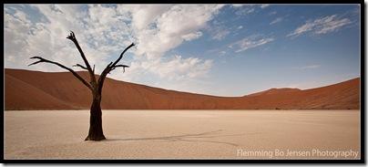 Deadvlei. Flemming Bo Jensen Photography