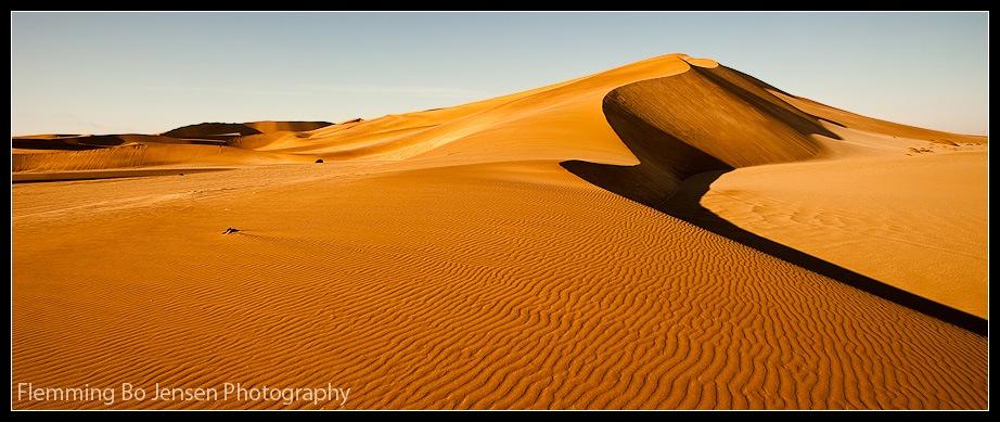 """Featured image for """"Desert. Snake. Lizard. Fremen. Me"""""""