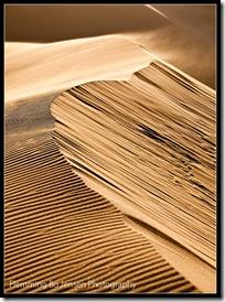 Sand storm. Flemming Bo Jensen
