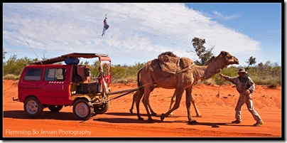 Camel Man. Flemming Bo Jensen Photography