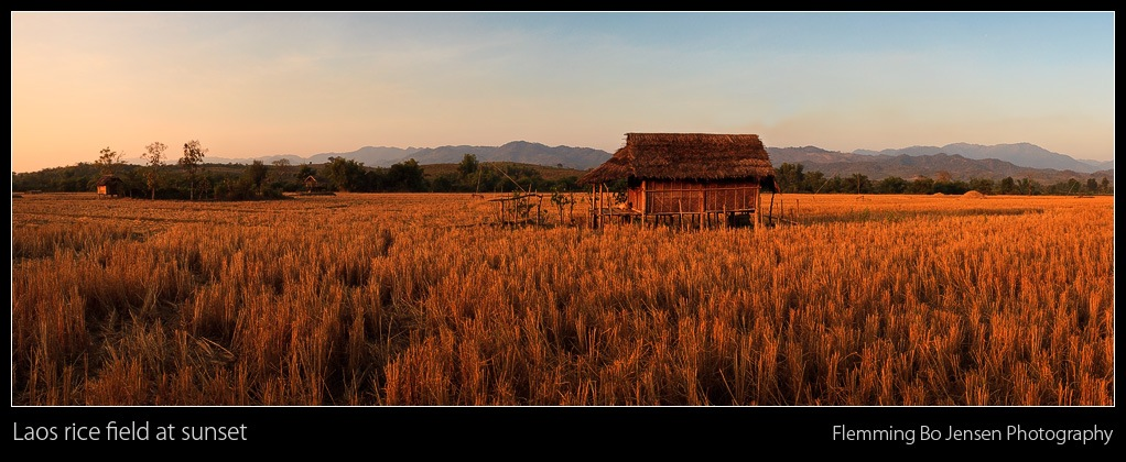 """Featured image for """"Field of Dreams in Laos"""""""