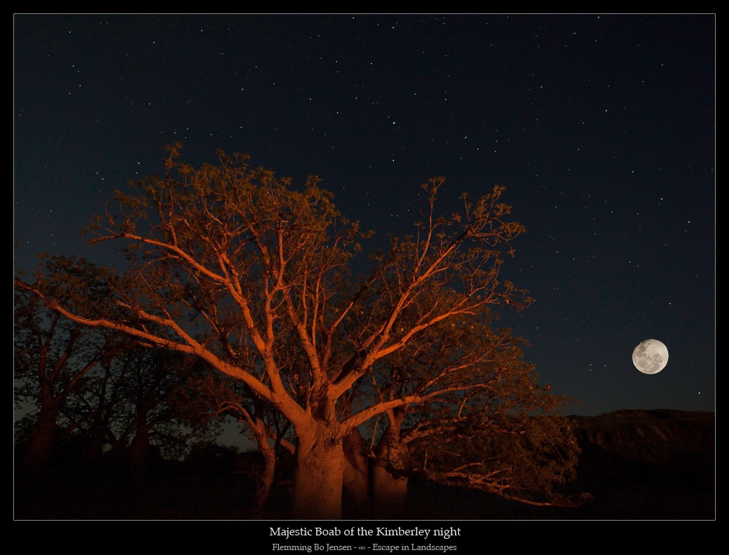 """Featured image for """"Jarlmadangah and the Full Moon"""""""