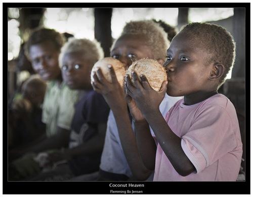 PNG-coconut-final
