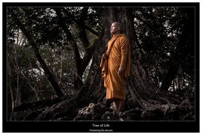 cambodia-tree-of-life
