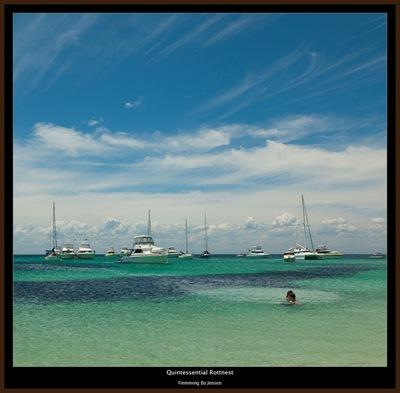 Rottnest-quintessentail