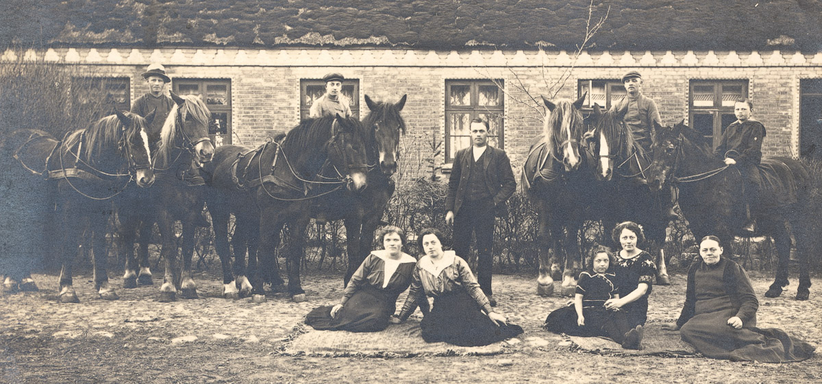 Our family farm around 1910. My grandfather a young boy, sitting on a black horse.