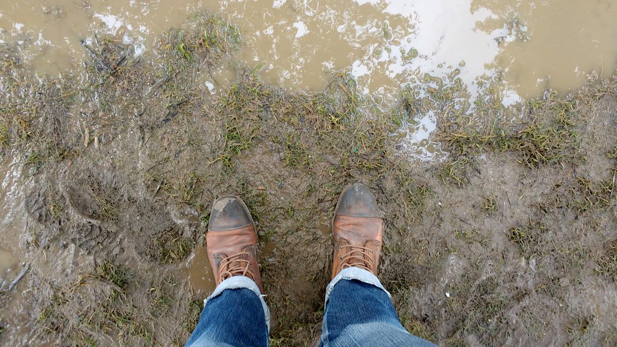FBJ-Roskilde2016-mud